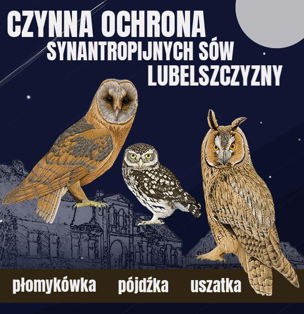 fundacja-dla-przyrody_projekt_czynna_ochrona_synantropijnych_sów_lubelszczyzny